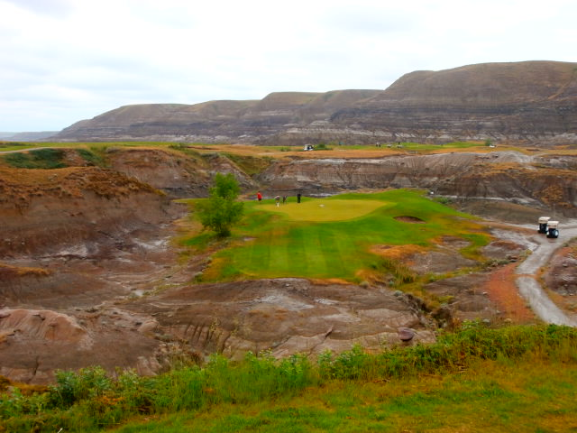 Canalta Charity Golf Tournament Drumhellar Dragons - 19